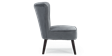 Aylenne Accent Chair in Grey Velvet Image 3